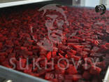 Инфракрасная сушильная камера для продуктов питания Sukhoviy - photo 6