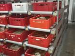 Оборудование для мясопереработки, гигиена и санитария - photo 6