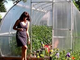 Prodaja rastlinjakov od proizvajalca v Republiki Belorusiji